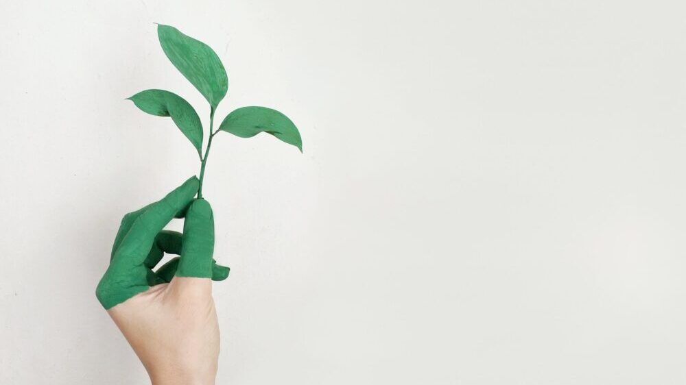 Sustainable investments – good for the climate and you.